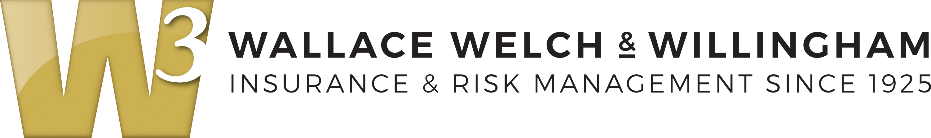 W3 Wide Logo Transparent.png